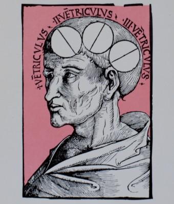 Encyclopaedia of Medical Ignorance - Closeup