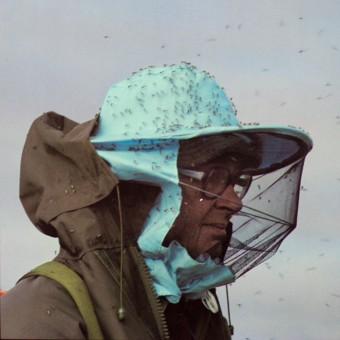 Travel Diaries of a Naturalist volume 2 - Closeup